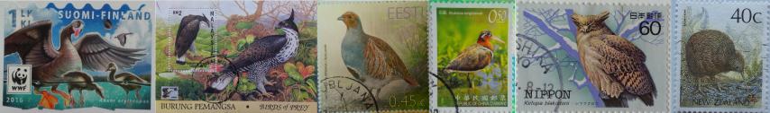 Ptáci známky (Small)