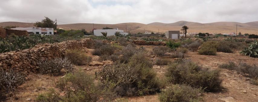 Opuštěné zahrady za vesnicí Tefía