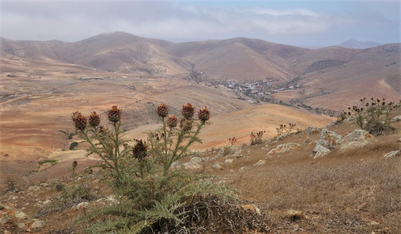 Betancuria pod horou Montaña Betancuria