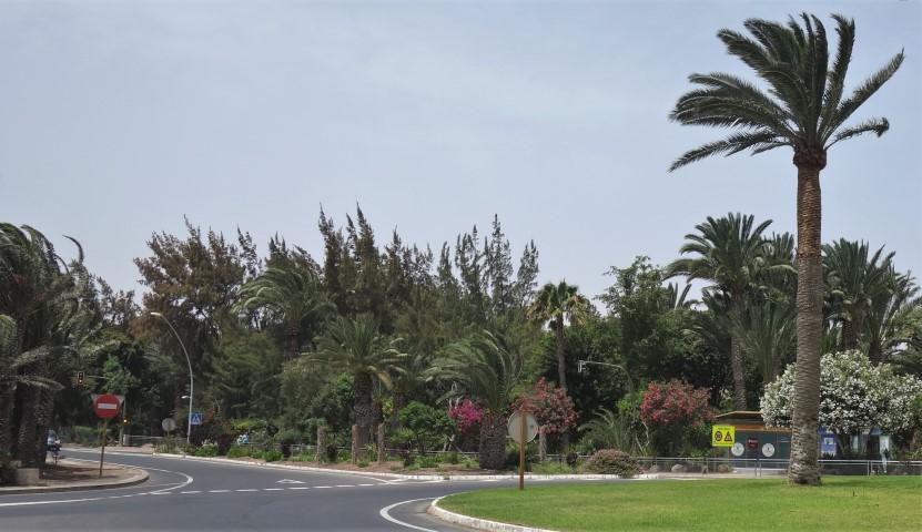 Park podél silnice v Costa Calmě