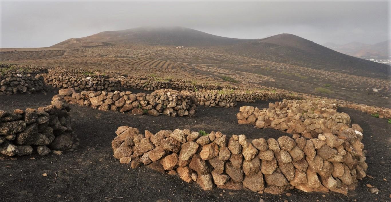 Kamenné zídky chránící rostliny vína na vrcholcích kopců