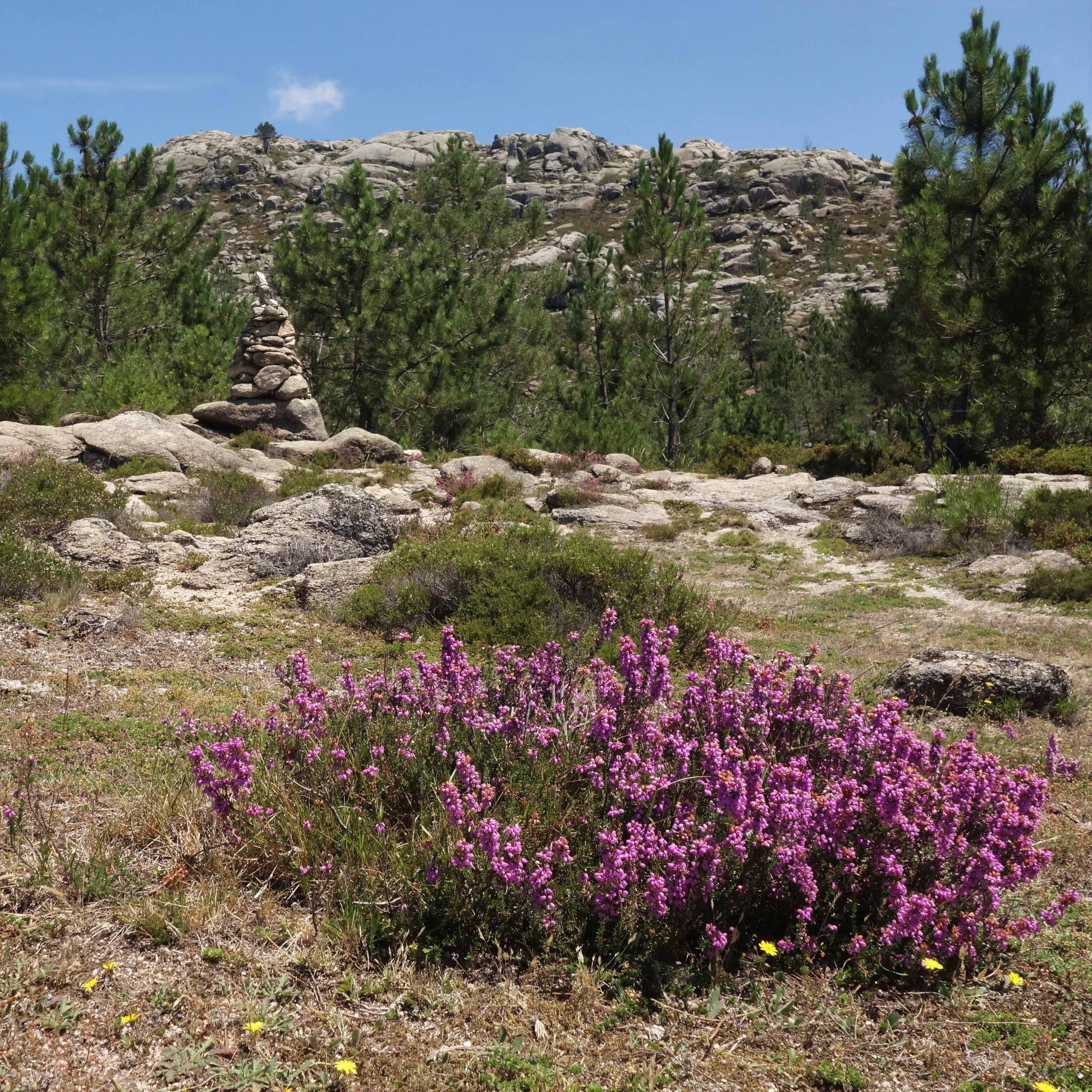 Vlakem do Portugalska, národní park Peneda-Geres