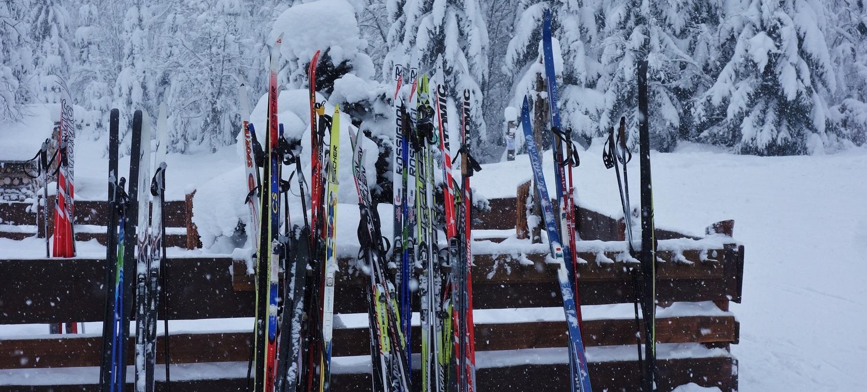 Trasy pro běžkaře v Krkonoších