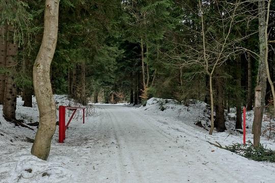 Běžkařské trasy v Krkonoších, stezka Buď fit v Labském dole