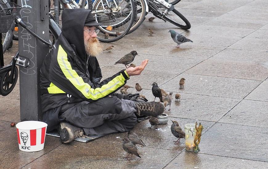 Bezdomovec krmí ptáky